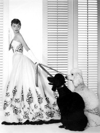 Sabrina: Audrey Hepburn