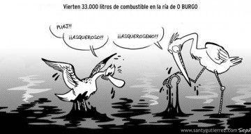 """¿Alguien puede explicarme qué """"gracia"""" tiene quemar montes o cargarse una ría? El único color de Galicia: el NEGRO!!!"""