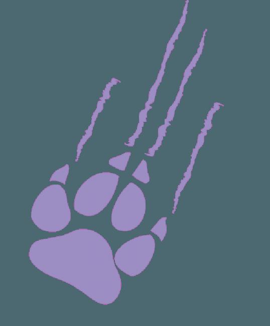 Monster High - Garra de Clawdeen Wolf