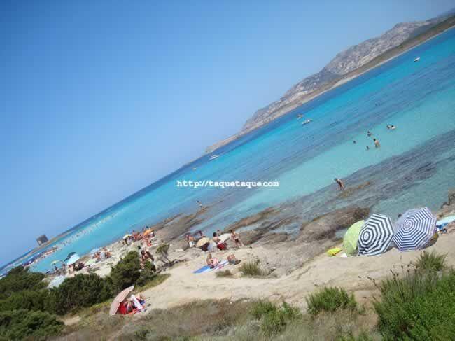 Cerdeña (Stintino - Asinara) 2009