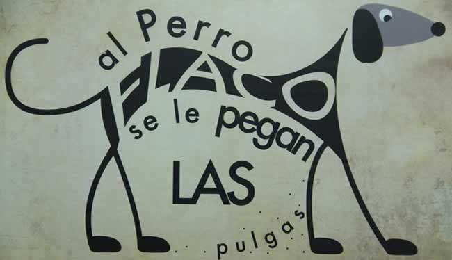 Al Perro Flaco by Andres Hernandez Garro