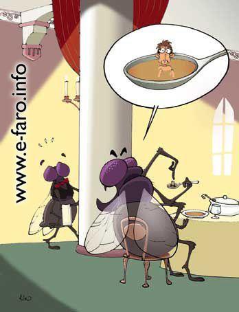 un hombre en la sopa de una mosca (www.e-faro.info)